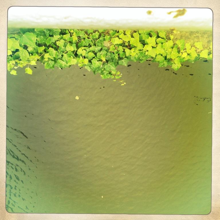 bruegge green