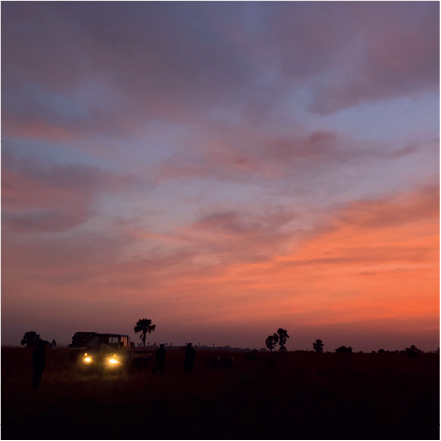 AFRICAN DUSK (15x15)
